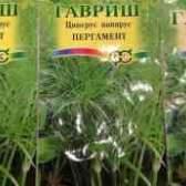 Циперус папирус из семян