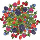 Дикорастущие плоды и ягоды