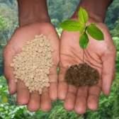 Удобрения – нормы внесения и способы применения