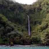 Необитаемый остров кокос