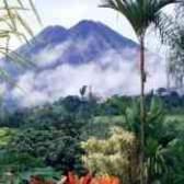 Остров кокос сокровища