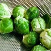 Заготовка капусты брюссельской