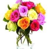 Значение цветов роз, что означает цвет розы