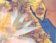 История растений: цветы в древнем египте