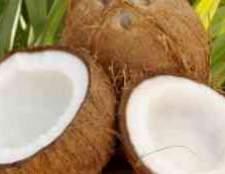 Кокос это фрукт или ягода малина