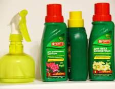 Копилка советов: как подкармливать комнатные растения