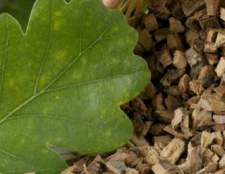 Кора дуба —природное средство для лечения диареи