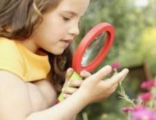 Лекарственные травы для детского здоровья