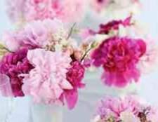 Оформление свадьбы в цвете фуксия и салатовый