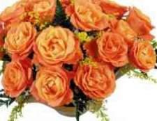 Пензенский магазин цветов радуга пенза цветы живые на заказ розы хризантемы герберы гвоздики букеты оптом в розницу заказать заранее доставка.