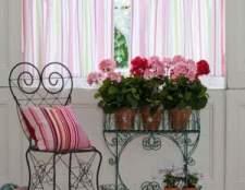 Польза и вред комнатных растений в интерьере квартиры