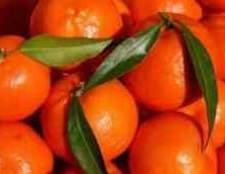 Род цитрусовых фруктов