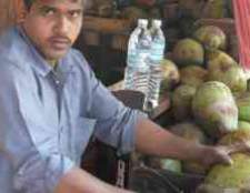 Самый большой кокосово