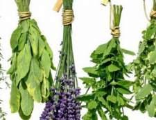 Сборы лекарственных растений для лечебной косметики